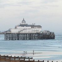 Friends of Eastbourne Pier